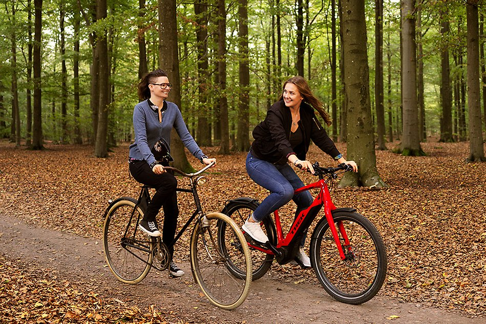 Two women biking in the forest. Photo.