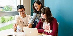 Courses and programmes for international students