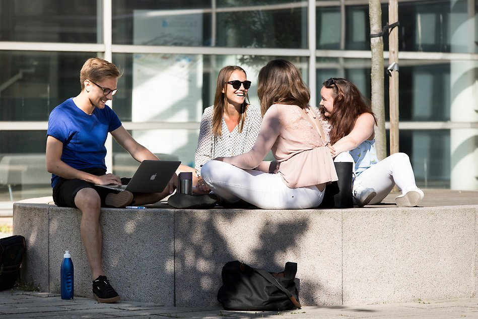 A group of student sitting outside, studying at campus. Photo.